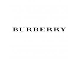 4e42768efbc Burberry Boutique